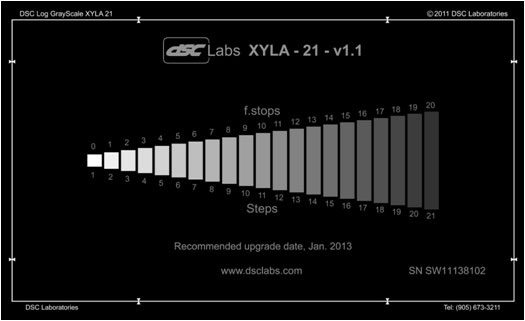 DSC Labs CDX1-81W Xyla 21 - 120dB 21-Step Grayscale with Built-In Light Source - Standard 21.3 x 13 Inches CDX1-81W